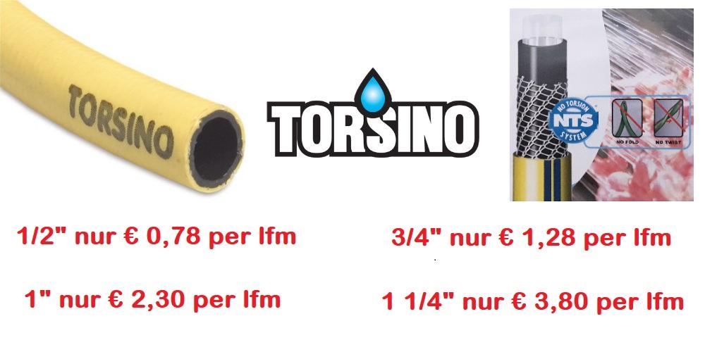 Torsino-Akrion